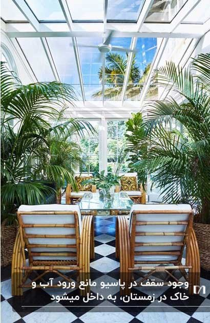 نورگیری با سقف شیشه ای و صندلی استخری چوبی و دو درختچه کوچک