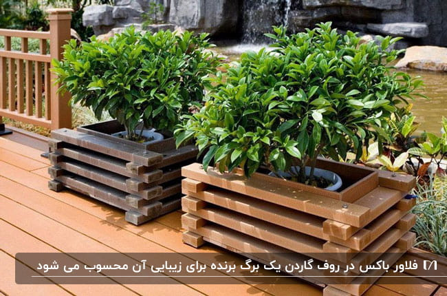 فلاور باکس های چوبی برای روف گاردن