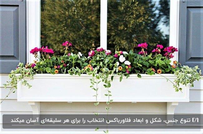 فلاورباکس زیر پنجره ای سفید با گل های صورتی و بنفش