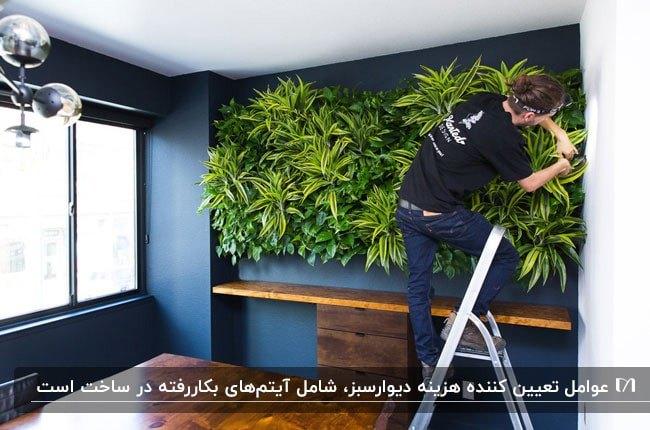 تصویری از مرحله ساخت دیوار سبز روی یک دیوار به رنگ سرمه ای کنار پنجره ای بزرگ