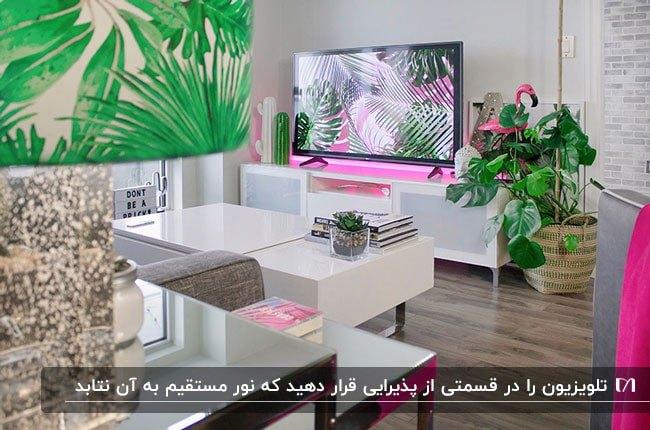 تصویر تلویزیون و میز تلویزیون براق سفیدی در یک نشیمن با گیاهان اطراف آن