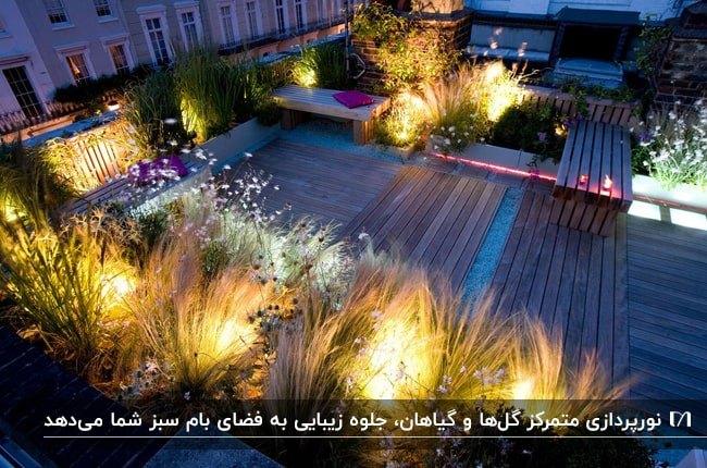 روف گاردنی با کفپوش چوبی و نورپردازی متمرکز گیاهان