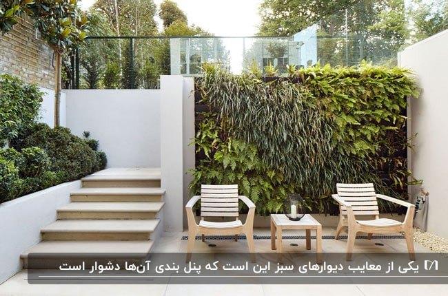 دیوارسبز در محوطه یک حیاط با میزو صندلی های راحتی چوبی