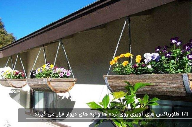 تصویر فلاورباکس های آویزی لبه های دیوار با گل های بنفشه