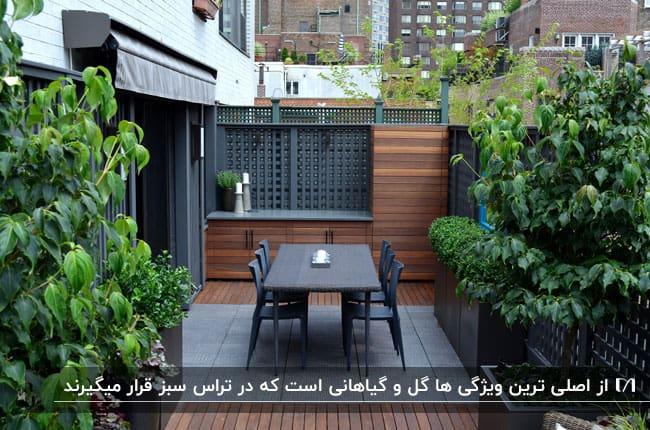 تراس سبز کوچکی با یک دیوارچوبی، میز و صندلی های مشکی و گیاهان سبز