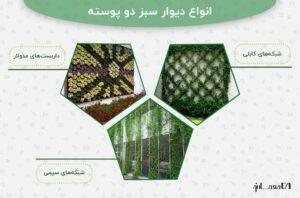 اینفوگرافی انواع دیوار سبز دو پوسته با سه عکس به عنوان نمونه
