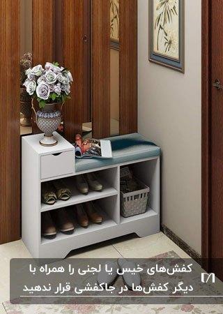یک جاکفشی سفید کوچک در ورودی خانه مقابل پارتیشن چوبی با یک گلدان روی آن