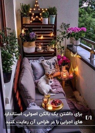 بالکن باریکی با یک مبل راحتی یاسی، یک سگ سفید و ریسه های چراغ