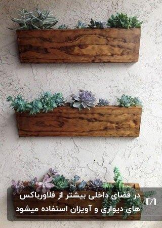 تصویر سه فلاورباکس چوبی روی دیوار سفید