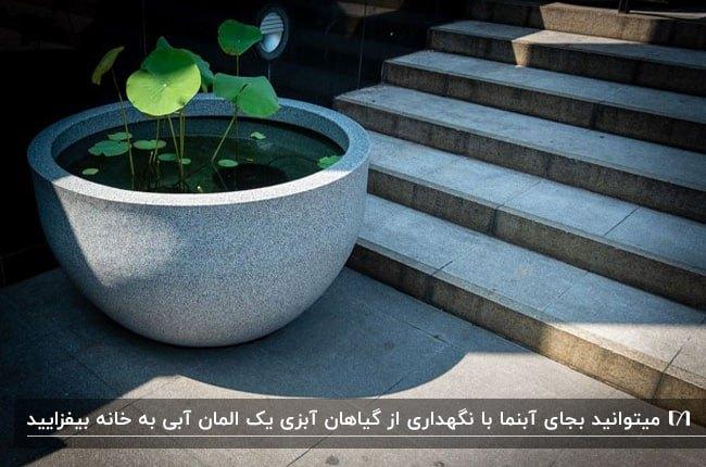 تصویر کاسه بتونی بزرگی پر از آب به همراه گیاهان آبزی بجای آبنما