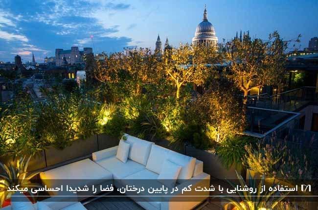 مبلمان ال شکل سفیدی بر روی روف گاردن با گیاهان نورپردازی شده