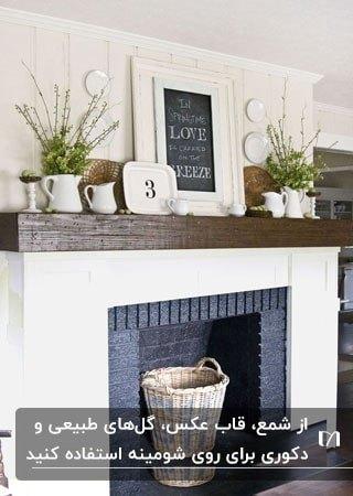 شومینه ای با دیوار سفید و طاقچه چوبی و دکوری ها و گیاهانی روی طاقچه