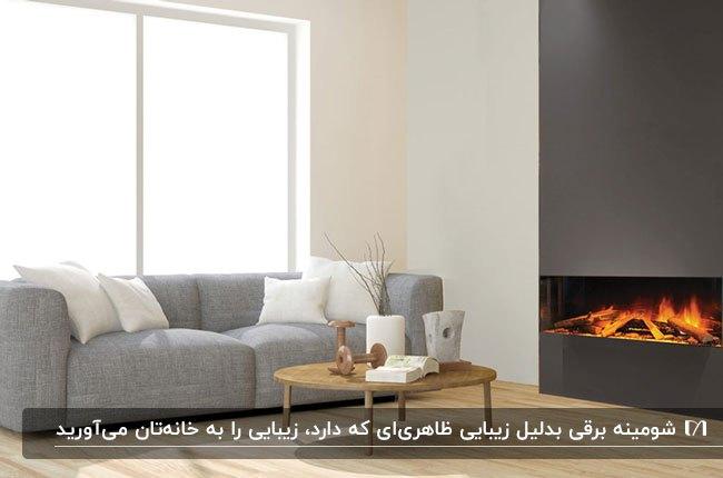 نشیمن زیبایی با کاناپه طوسی و شومینه برقی خاکستری و میز چوبی