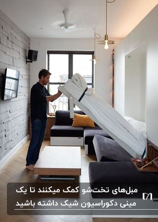 آپارتمان کوچک با مبل ال خاکستری مقابل تلویزیون روی دیوار و تخت تاشو دیواری