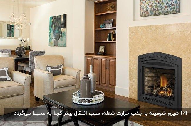 تصویر یک شومینه گازی با فریم چدنی در اتاق نشیمنی با مبلمان کرم کنار کمد چوبی