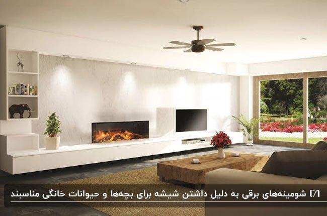 نشیمنی مستطیلی با یک دیوار شیشه ای و شومینه و برقی و تلویزیون کنار هم روی دیوار
