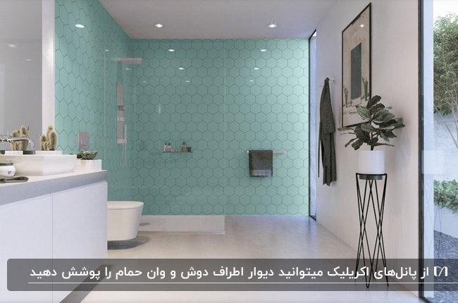 یک سرویس بهداشتی سفید با دیوارپوش اکرلیک آبی برای دیوارهای اطراف دوش