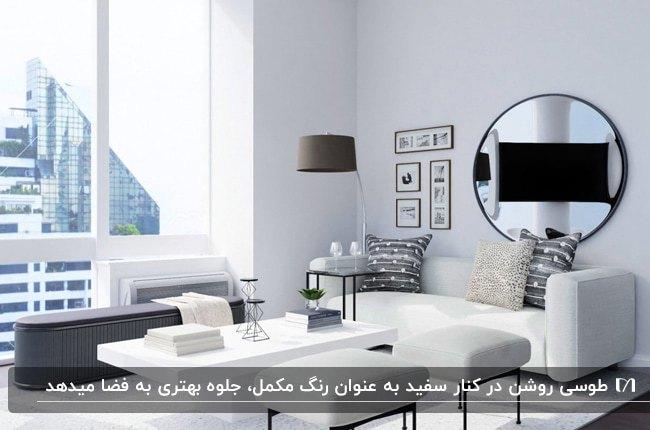 دکوراسیون نشیمنی با ترکیب رنگ طوسی و سفید برای مبلمان، میز و کوسن ها