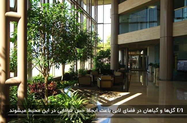 لابی ساختمان بزرگی با انواع و گل و گیاهان اطراف مبلمان و کنار پنجره ها