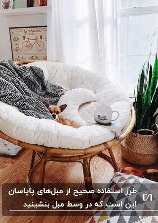 تصویر یک پاپاسان چوبی با تشکچه سفید و کوسن شکل ماه و شال مبل خاکستری