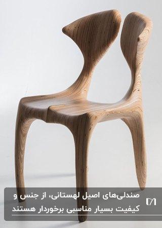 طراحی مدرن و خاص یک صندلی لهستانی با چوب مقاوم