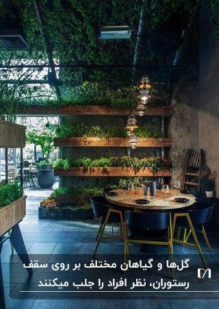 رستورانی با قفسه های دیواری چوبی، با میز گرد و صندلی های مشکی با سقف پوشیده شده از گیاهان