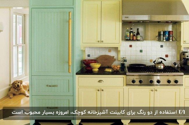 آشپزخانه ای کوچک با کابینت های یک طرفه با دو رنگ زرد و سبز کمرنگ