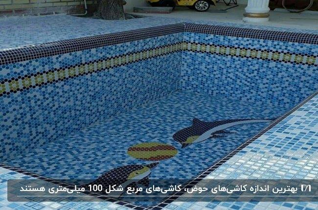 حوض یا استخر کوچک مستطیل شکل با کاشی کاری مربعی و طرح دو دلفین