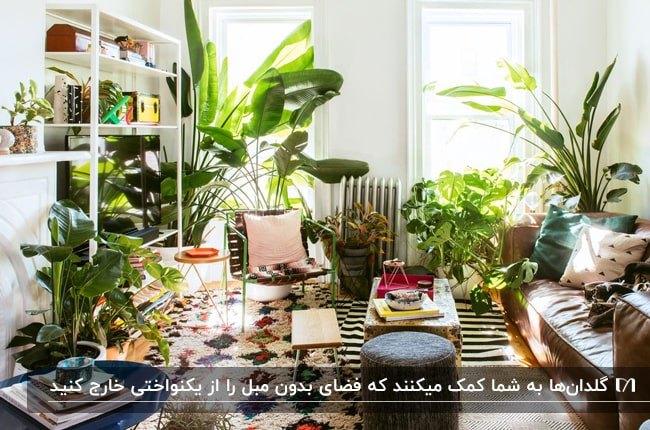 نشیمنی بدون مبل با صندلی فلزی و کاناپه چرمی قهوه ای با انواع گلدان های گل اطراف پنجره