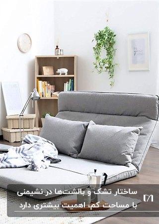 تشک تخت شوی مدرن طوسی با دو کوسن مستطیلی بزرگ در نشیمن بدون مبل