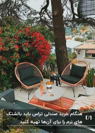 تراسی با گل های قرمز رنگ، مبل و دو صندلی تک نفره چوبی با پارچه سبز تیره