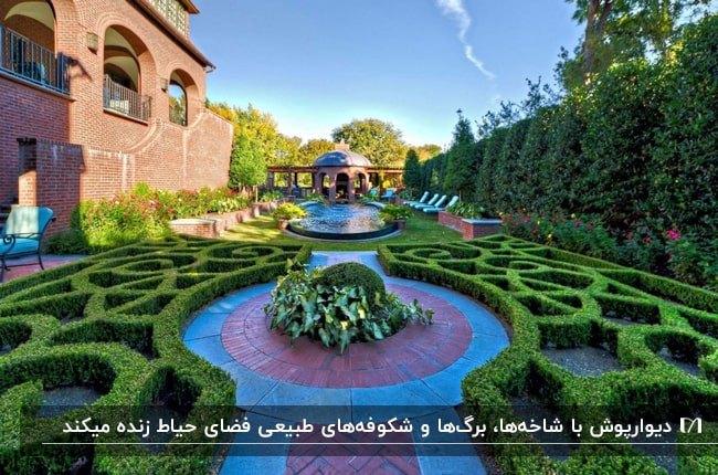 حیاطی با محوطه سازی توسط گیاهان طبیعی و دیوارپوش سبز با استفاده از گیاهان