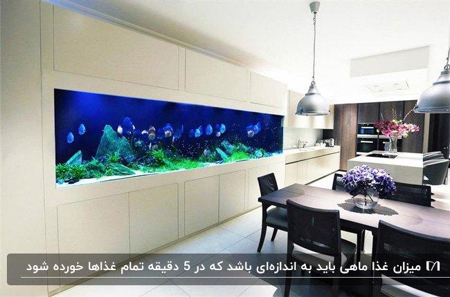 آشپزخانه ای با کابینت های سفید و آکواریوم خانگی برای فضای بین کابینت