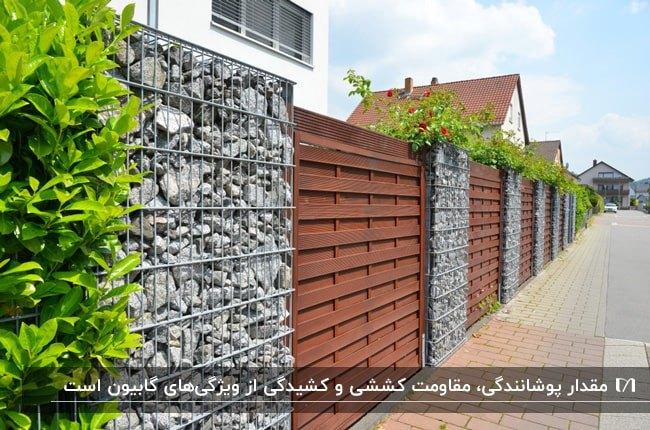 دیوار گابیونی و درب ورودی قهوه ای تیره با گیاهان برای ورودی خانه