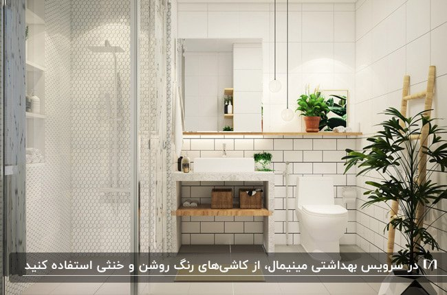 دکوراسیون مینیمال حمام و سرویس بهداشتی با کاشی سفید و گلدان های گل