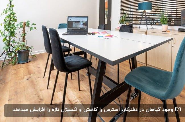 طراحی اتاق مدیریت با میز جلسه سفید و صندلی های مشکی و آبی و گلدان های گل کنج اتاق