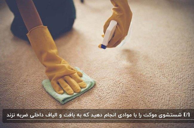 تصویر نحوه شستشو و نگهداری موکت ها با مواد شوینده و دستکش و پارچه