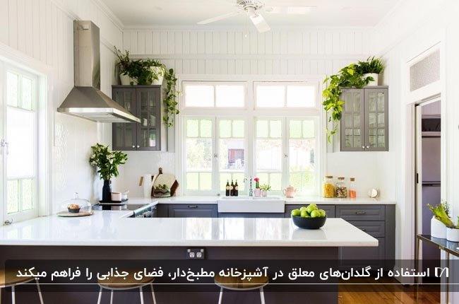 آشپزخانه مطبخ داری با کابینت قهوه ای تیره، رویه سفید . گلدان های گل