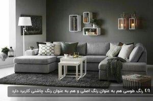 دکوراسیون طوسی یک اتاق نشیمن با مبلمان و دیوار و کفپوش طوسی و جلو مبلی سفید