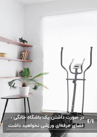 باشگاه خانگی کوچکی با قفسه های چوبی دیواری، میز عسلی و گلدان گل