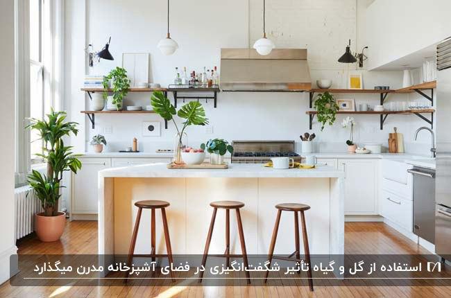 آشپزخانه مدرن با کابینت های سفید و گل ها و گیاهان روی شلف، کانتر و کنج آشپزخانه