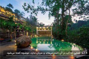 حیاط باغ ویلایی با یک استخر با هندسه آزاد نورپردازی شده و منظره جنگلی