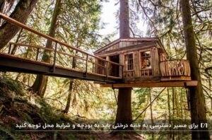 یک خانه درختی چوبی و راه ورودی پل مانند آن به همراه درختان جنگل