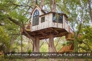 خانه درختی چوبی با رنگ روشن و یک پنجره طاق مانند بر روی دو درخت